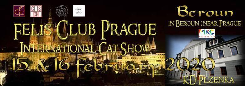 FIFé International Catshow Beroun - 15. - 16. února 2020